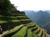 inka-trail-ruins