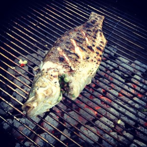 whole fish on the grill
